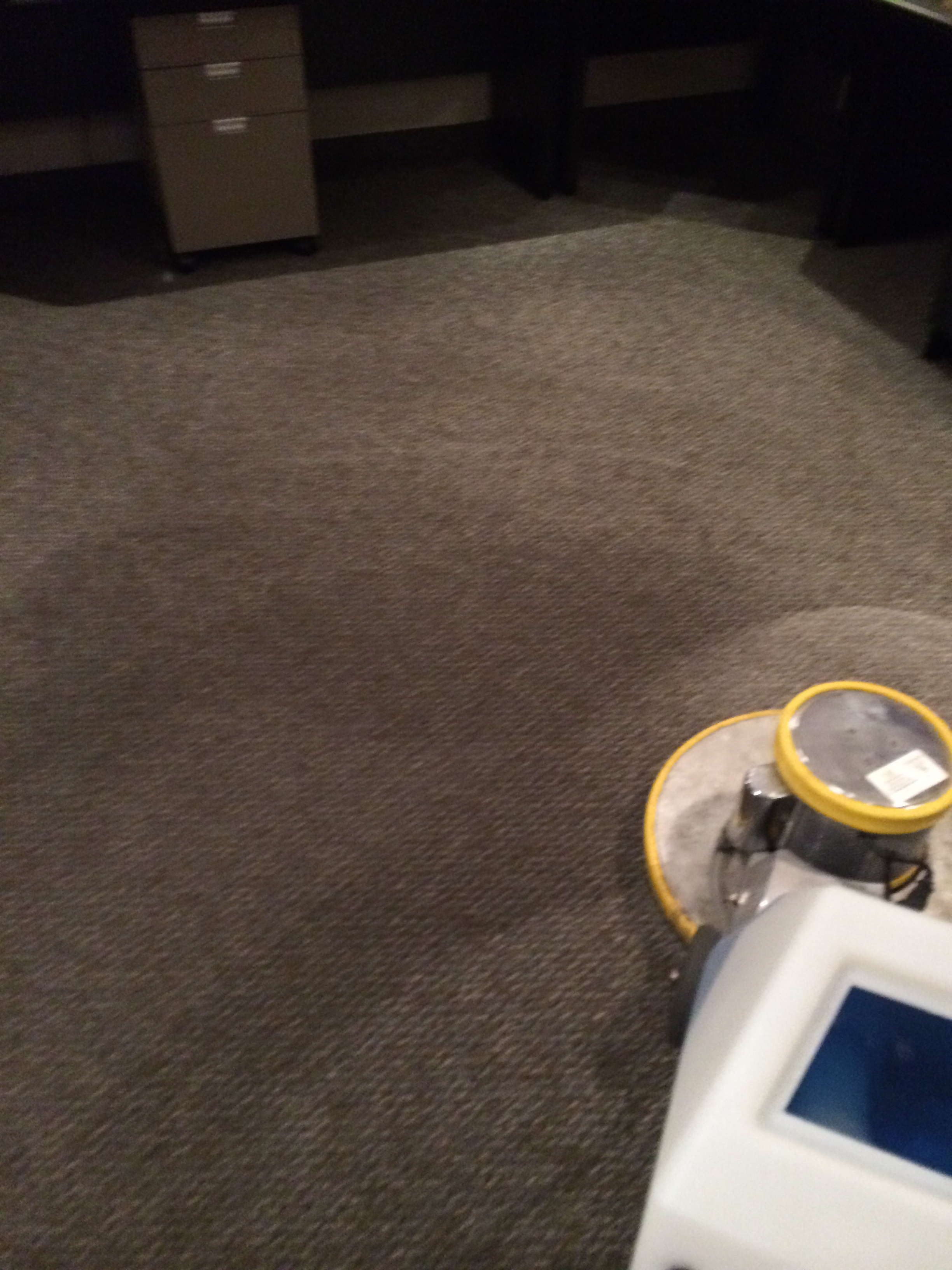 Before-Carpet Wash